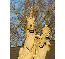 unicorn sunset Photographic Print