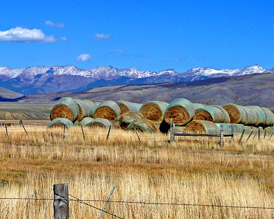 Farming near Walden, Colorado by Margaret  Hyde