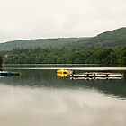 Calm Boats by Kaye Stewart