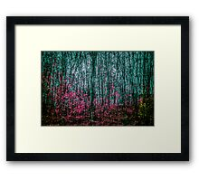 FragmenTree Framed Print