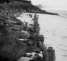lennox head seven mile beach_3 by GrowingWild