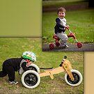 "Henry ""Riding"" by Paul Grinzi"