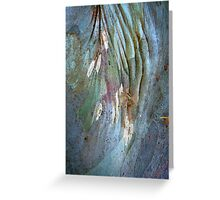 Bark Abstract # 15 Greeting Card