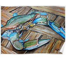 MD Blue Crab, bottom of the Bushel  Poster