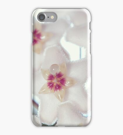 Hoya Blossom and Bud Diptych iPhone Case/Skin