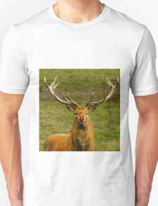Rudolph the Red Nosed Red deer T-Shirt