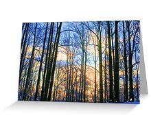 Snowy Woodlands EX Greeting Card