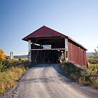 Sunshine On The Hayes Covered Bridge by Gene Walls