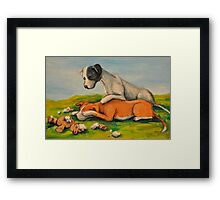 Vicious Pit Bull Dogs! Framed Print