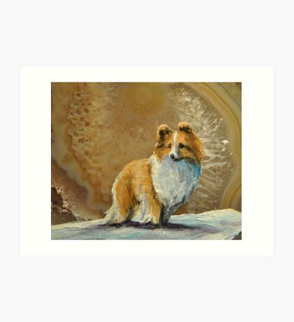 Shetland Sheepdog~~Sheltie Art Print