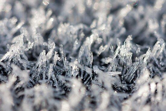 Crystal Landscape by Michael G Devereux