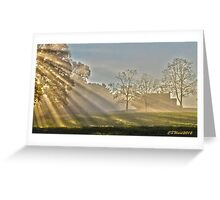 Along the Shores of Chadwick Pond Greeting Card