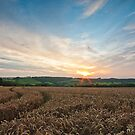 Cotswold Countryside by Billy Hodgkins