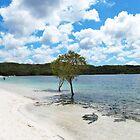 Lake Mackenzie by LibbyWatkins