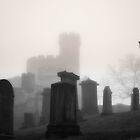 Foggy Graveyard by Errne