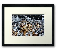 Anilio - travel photography print Framed Print