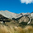 Craigieburn Range #1 by johngs
