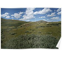 Guanella Pass Slopes Poster