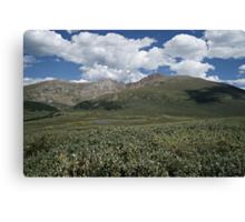 Guanella Pass Mt Bierstadt Canvas Print