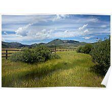 Steamboat Lake Mountain Meadow Poster