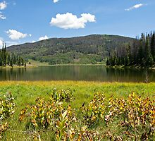 Pearl Lake Sunny Afternoon by Michael Kirsh