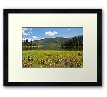 Pearl Lake Sunny Afternoon Framed Print