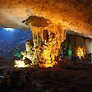 Cave at Ha Long Bay Vietnam by Julie Sherlock