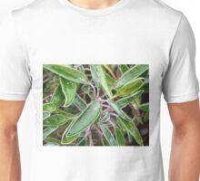 Sage Under Ice Unisex T-Shirt
