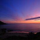 bridport sunrise. north eastern tasmanian coast, australia by tim buckley | bodhiimages