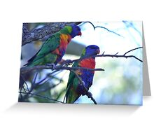 BirdAus_Lorikeet_SDJ2 Greeting Card