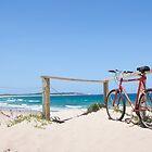 Wanda Bike by Kaye Stewart