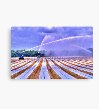 Irrigation Colors Canvas Print