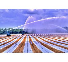Irrigation Colors Photographic Print