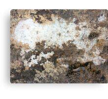 Beige Macro...dirty brick Canvas Print