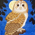 The Tawny Owl by Véronique Cole by aquartistic