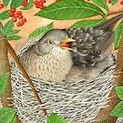 The Female Blackbird by aquartistic
