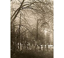 Cemetery Brown Photographic Print