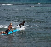 Surfing with Man's Best Friend by DeborahKolb