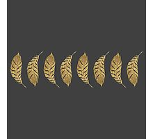 Pretty and Swanky Faux Gold Leaf Stripe on Black Photographic Print
