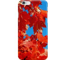 Fall is almost gone..The world will still be turning when you're gone...Lost in the wheels of confusion iPhone Case/Skin