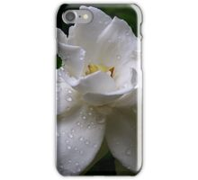 Delicate and Fragrant Gardenia iPhone Case/Skin