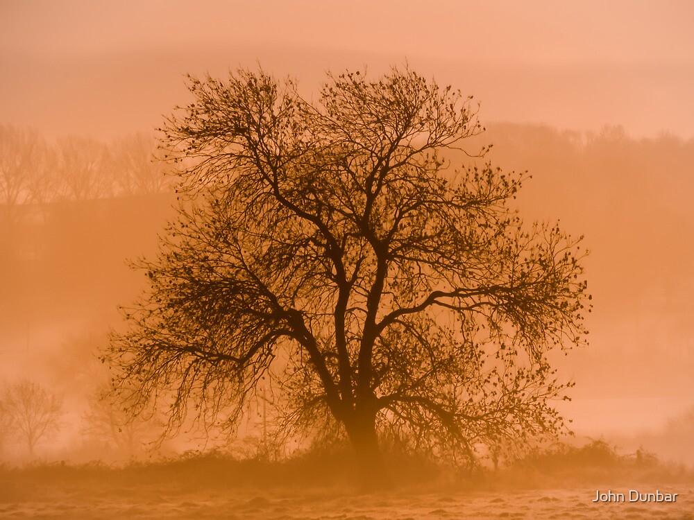 The Promise of Dawn by John Dunbar