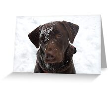 Frosty Lab Greeting Card