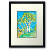 East Bluff Eucalyptus Framed Print