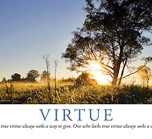 Virtue by Lisa Frost