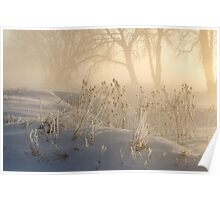 Winter's Golden Magic Poster