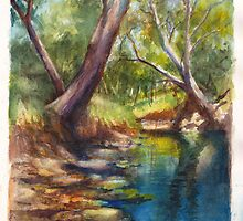 Dandenong Creek in December Heat by Dai Wynn