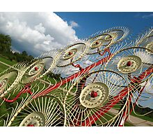 Twirling towards the sky Photographic Print