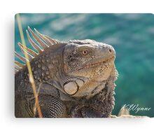 Iguana be like you Canvas Print