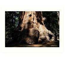 Sequoia Big Foot Art Print